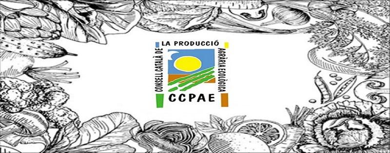 alta en el CCPAE blog
