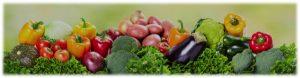 Formación - seguridad alimentaria