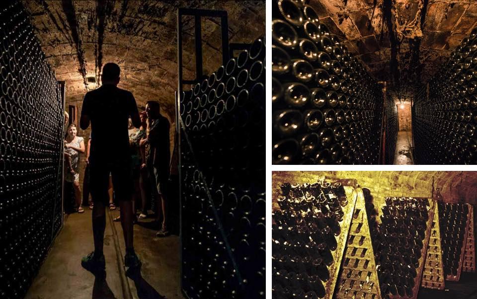 caves forns raventos enoturisme