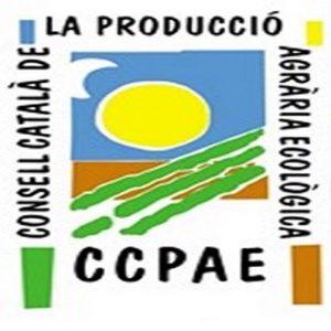 Logotipo CCAPE