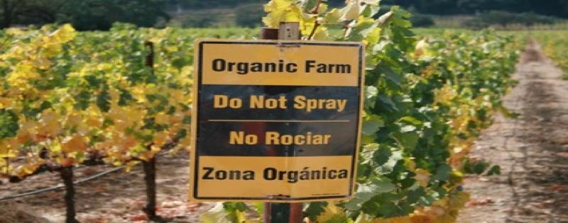 productes fitosanitaris banner